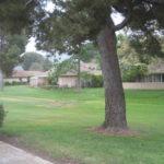 Property Pics 030
